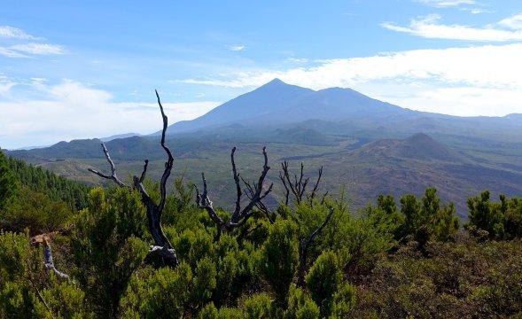 Wandern im Teno-Gebirge mit Blick auf den Teide