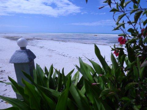 Tansania-Sansibar-Red-Monkey-Lodge-Strandausblick