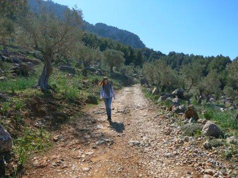 Wandern in Mallorcas Norden