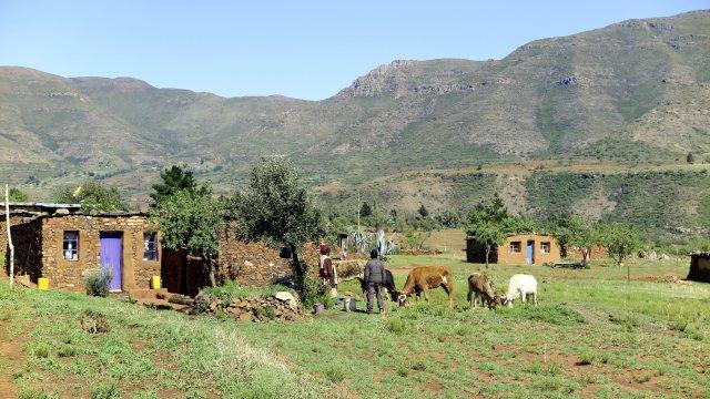 Dorf in Lesotho_2