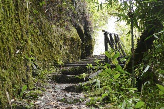 durch Steintreppe auf Inkatrail