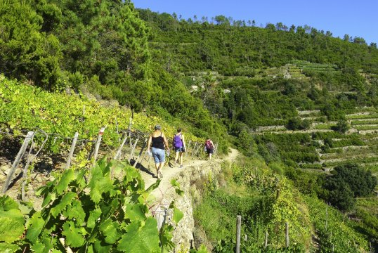 Wanderung Cinque Terre_2