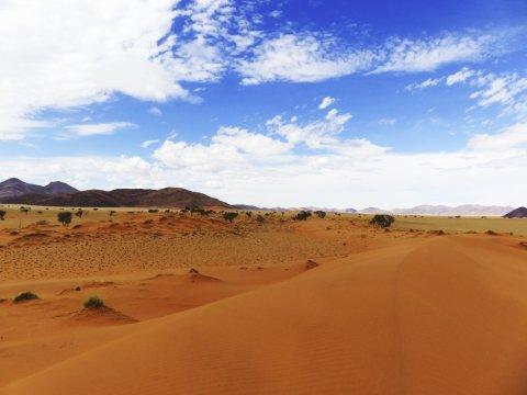 Farbenprächtige Namib Wüste
