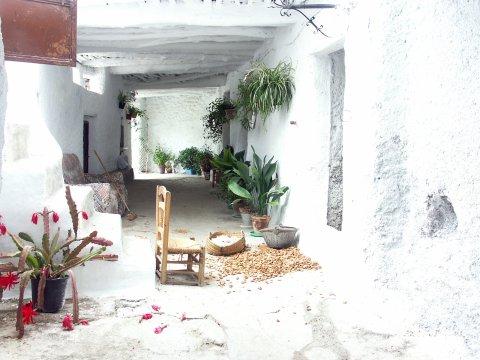Taha de Pitres in Mecinilla