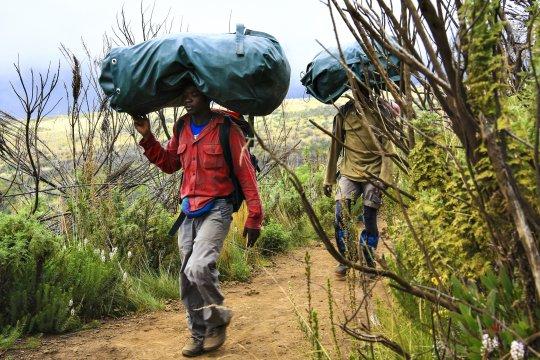 Traeger auf dem Weg zum Kilimanjaro