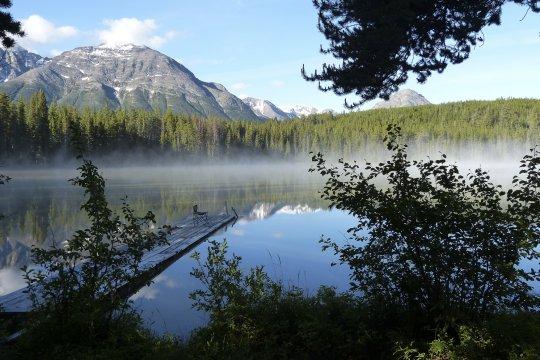 Am Bracewell Lake