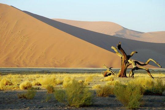 Abendstimmung Namib Wüste