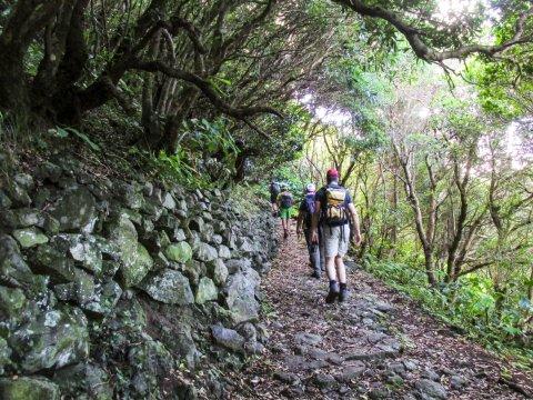Unterwegs auf den Azoren