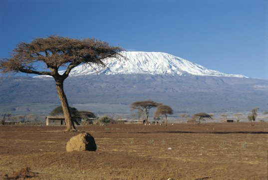 Blick auf den Kilimanjaro_2