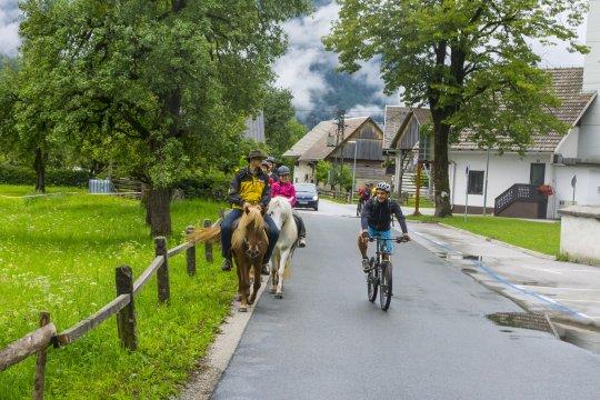 Slowenien-MTB-Zweiräder-und-Vierbeiner