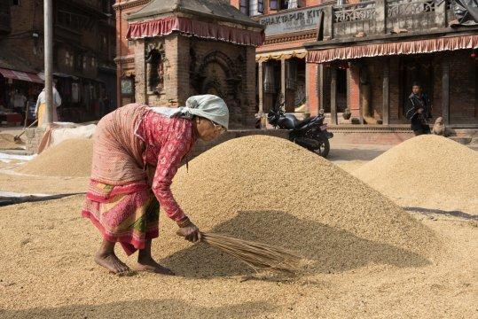 bhaktapur getreide trocknen_2