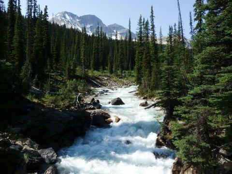 Iceline Trail_2