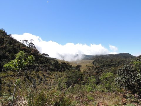 Horton-Plains-Nationalpark