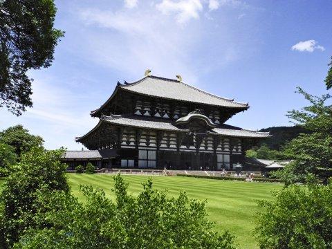 Nara Todaiji Tempel Sommer