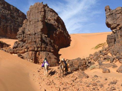 Sahara - Wechselspiel aus Sand und Sandstein