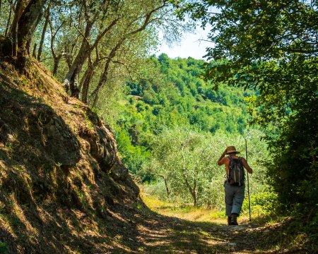 Wanderweg in der Lunigiana