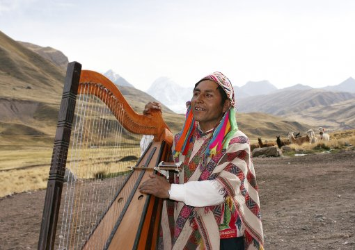 Peruaner Harve 2