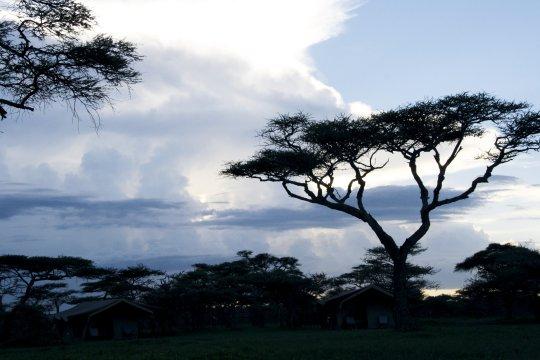 Abendstimmung Serengeti