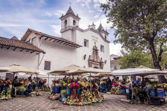 Blumen Markt Cuenca