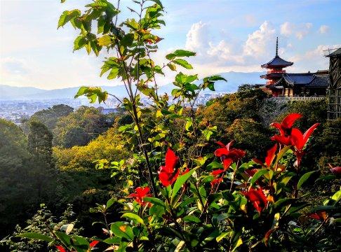 Tempel Kiyomizu-dera in Kyoto