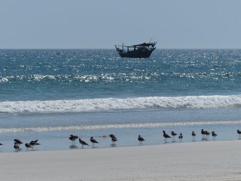 Oman-Küste-bei-Al-Khaluf
