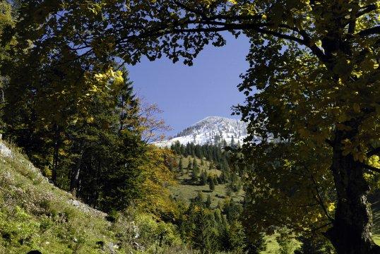 Wandern bayerische Vorlapen