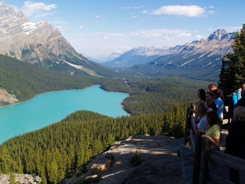Peyto Lake Jasper Nationalpark Kanada