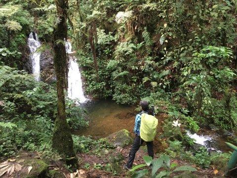 Uganda-Wasserfall-im-Bwindi-Forest-Uganda