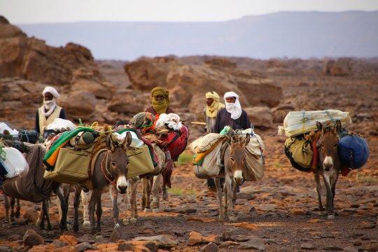 Eseltrekking auf dem Tigalayen Plateau in Algerien