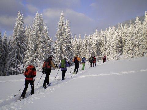 Schneeschuhgehen Bayerischer Wald 8