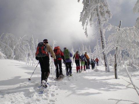 Schneeschuhgehen Bayerischer Wald 2