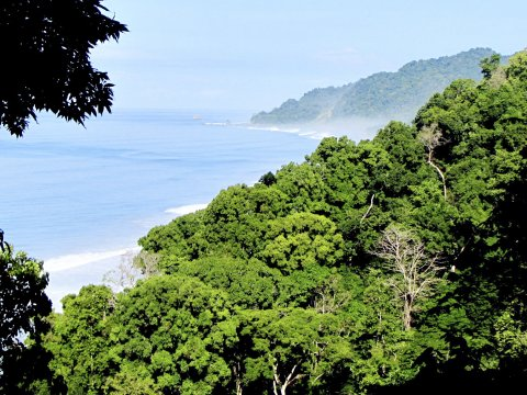 Corcovado Nationalpark 2