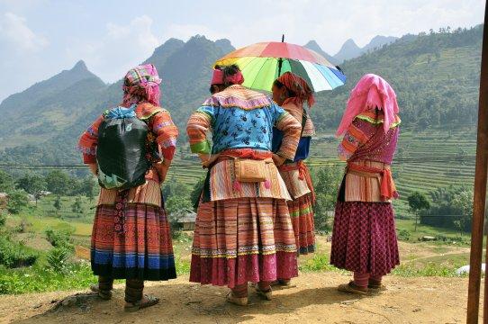 Blumen Hmong in Nordvietnam