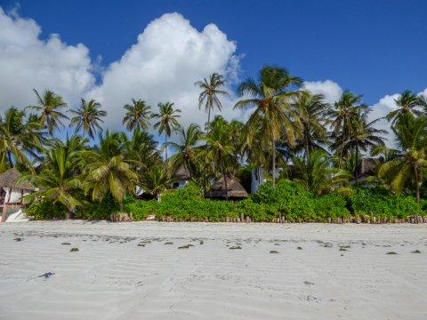 Tansania-Sansibar-Strand-Hodi-Hodi