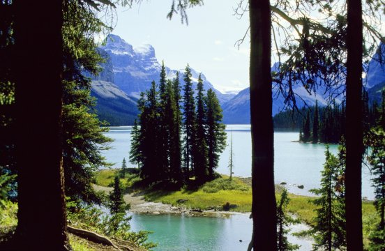 Albert Jasper National Park