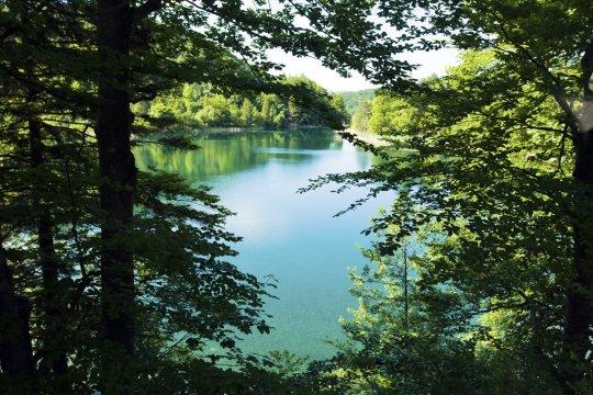 Jugoslavia Kroatia Splitvice Lakes park