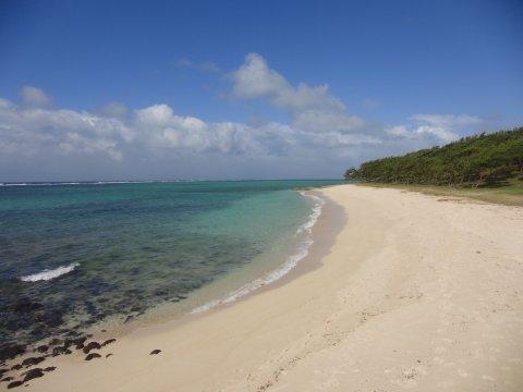 Rodrigues-Strand
