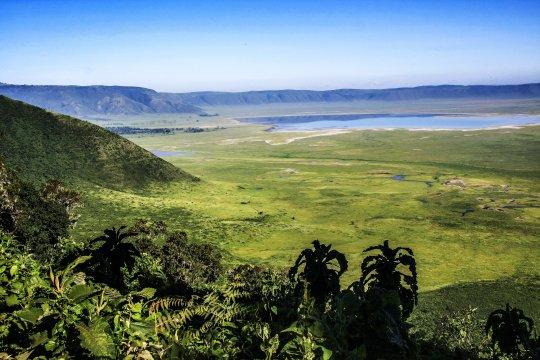 Fantastischer Ngorongoro Krater