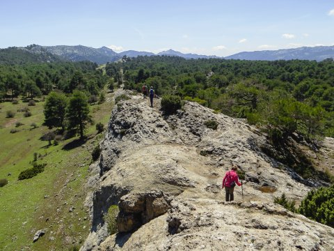 Im Naturpark Poyos de la Mesa