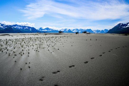 Alaskas ewige Weiten