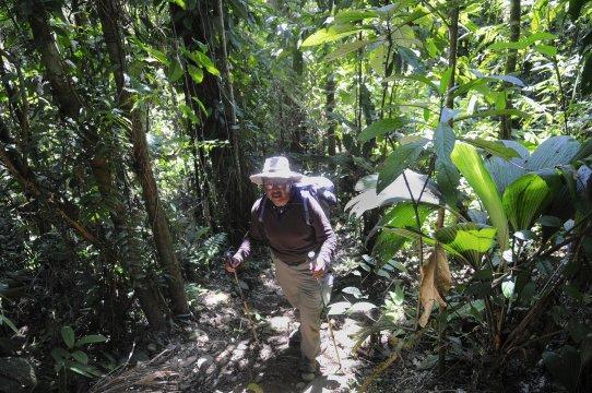 Peru Urwald Trekking