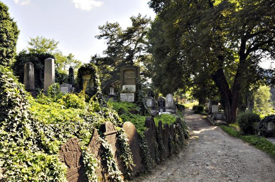 Friedhof Sighisoara