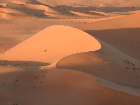 Orange-rote geschwungene Düne in der Rub Al-Khali