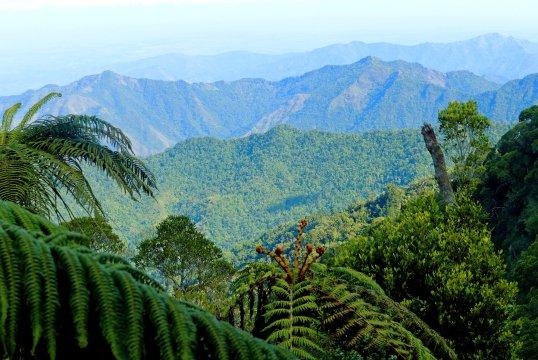 Panoramablick ueber die Sierra Maestra