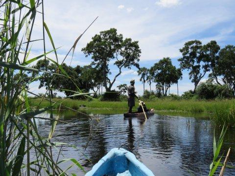 Botswana-Okavango-Delta-Mokoro-Ausflug-abbiegen