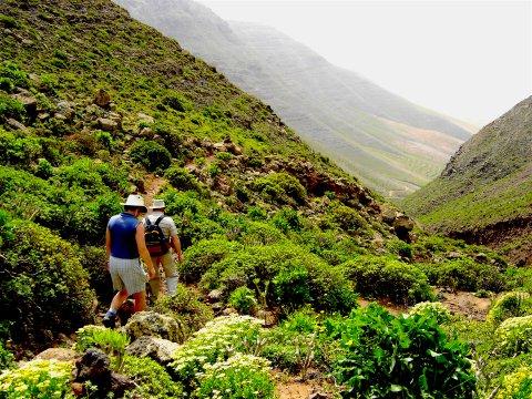 Unterwegs in Lanzarotes Schluchten