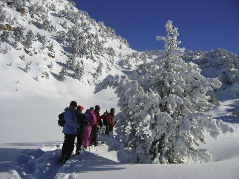 SchneeschuhwandergruppeErklaerungen