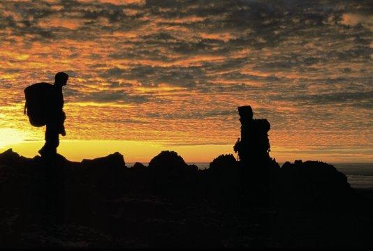 Mt. Kenya / Morgenstimmung