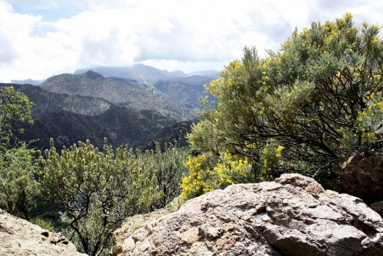 Zentrales Bergmassiv auf Gran Canaria
