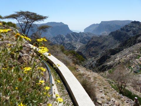 Oman-Jebel-Akhdar-Wanderung